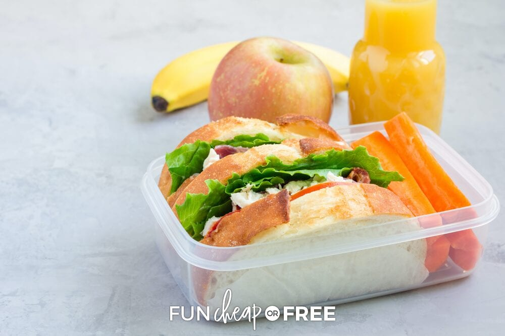 Sandwich in a box, from Fun Cheap or Free