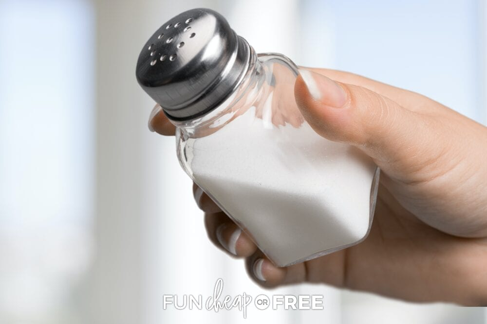 Add rice to your salt shaker to absorb all the moisture and keep it shaking like normal - Tips from Fun Cheap or Free