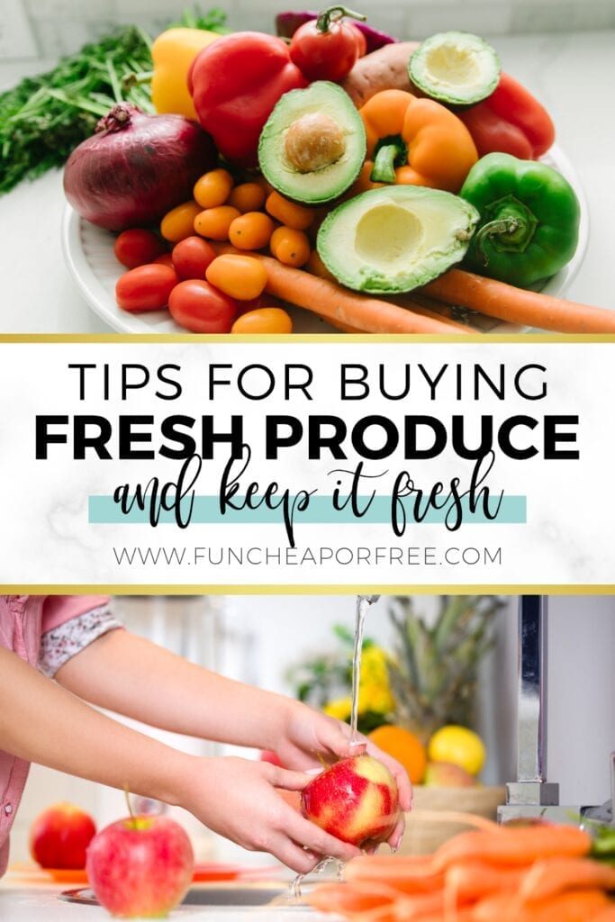 Tips for buying cheap produce in season and keep it fresh from Fun Cheap or Free