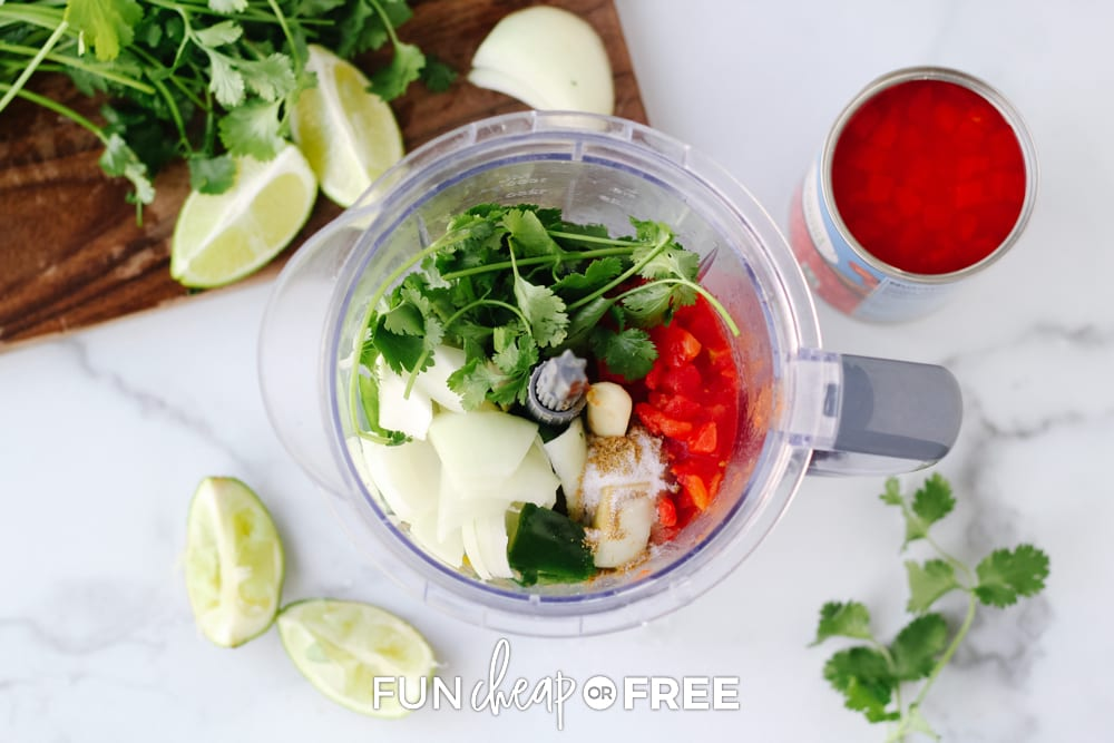 salsa ingredients in a blender, from Fun Cheap or Free