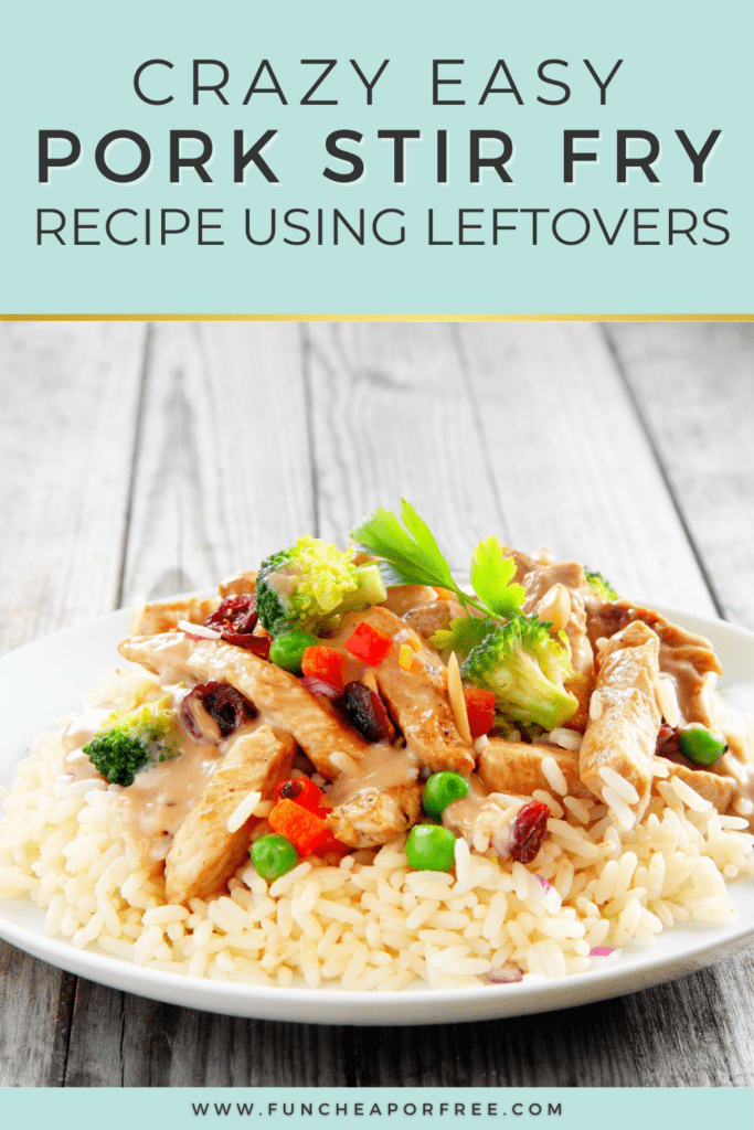 Pork stir fry on a plate, from Fun Cheap or Free