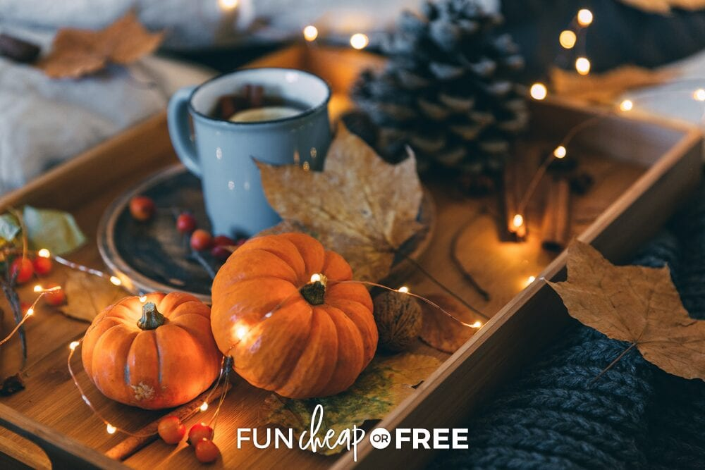 Fall centerpiece with pumpkins and pine cone on a wooden tray, from Fun Cheap or Free