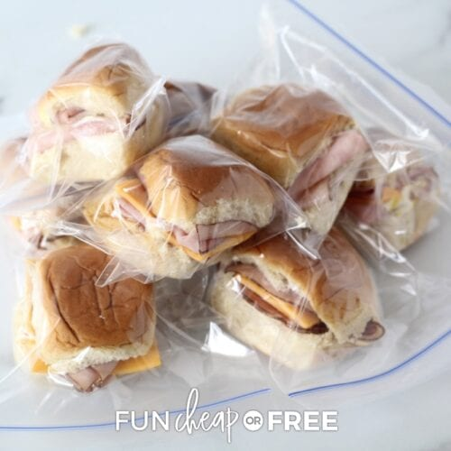 Frozen sandwiches in individual baggies on a counter, from Fun Cheap or Free