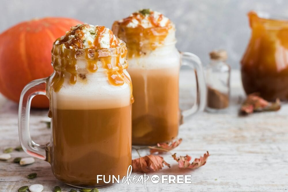 Starbucks copycat fall drinks on a counter with pumpkin in the background, from Fun Cheap or Free