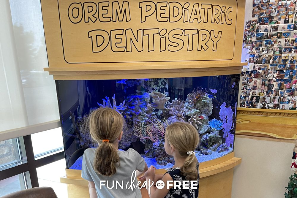 Girls looking in fish tank at dentist office, from Fun Cheap or Free