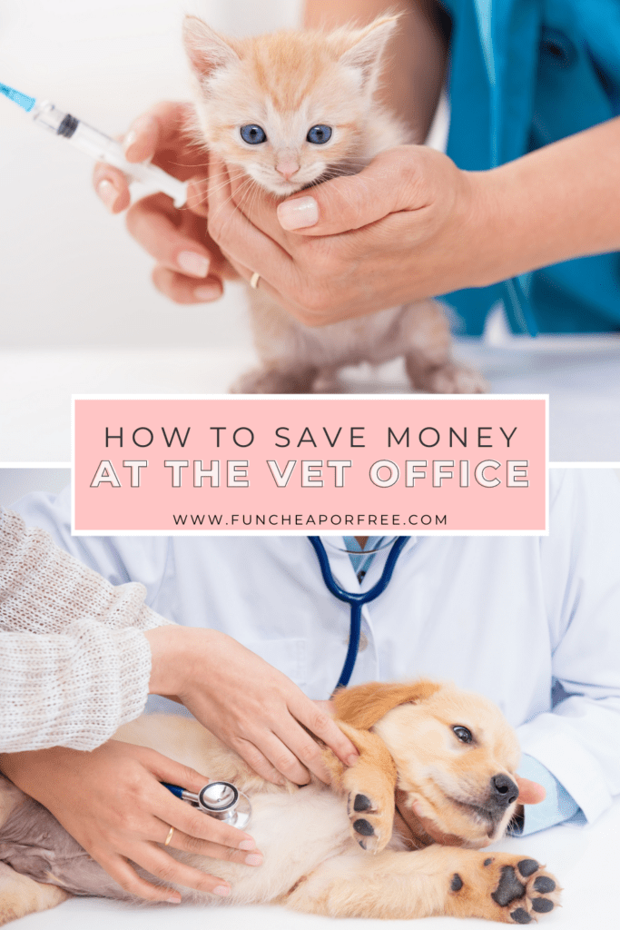 """image with text that reads """"how to save money at the vet"""", from Fun Cheap or Free"""