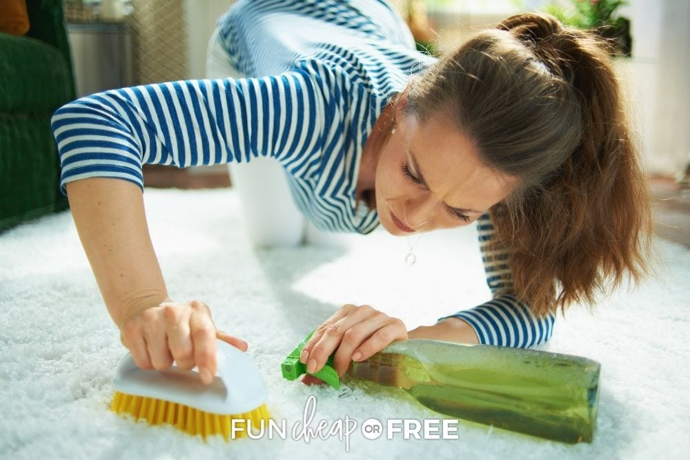 Woman scrubbing carpet with brush for how to remove stains from Fun Cheap or Free.