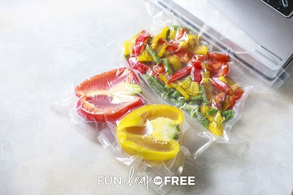 vacuum sealer for food, from Fun Cheap or Free