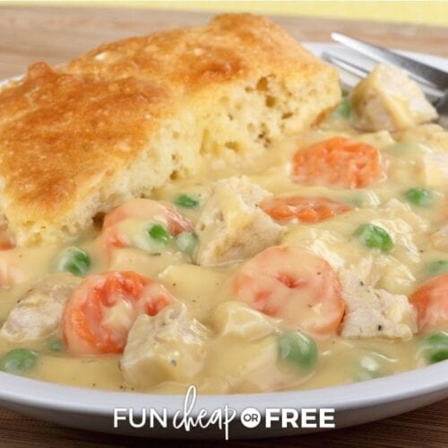 Chicken pot pie on a plate from Fun Cheap or Free.