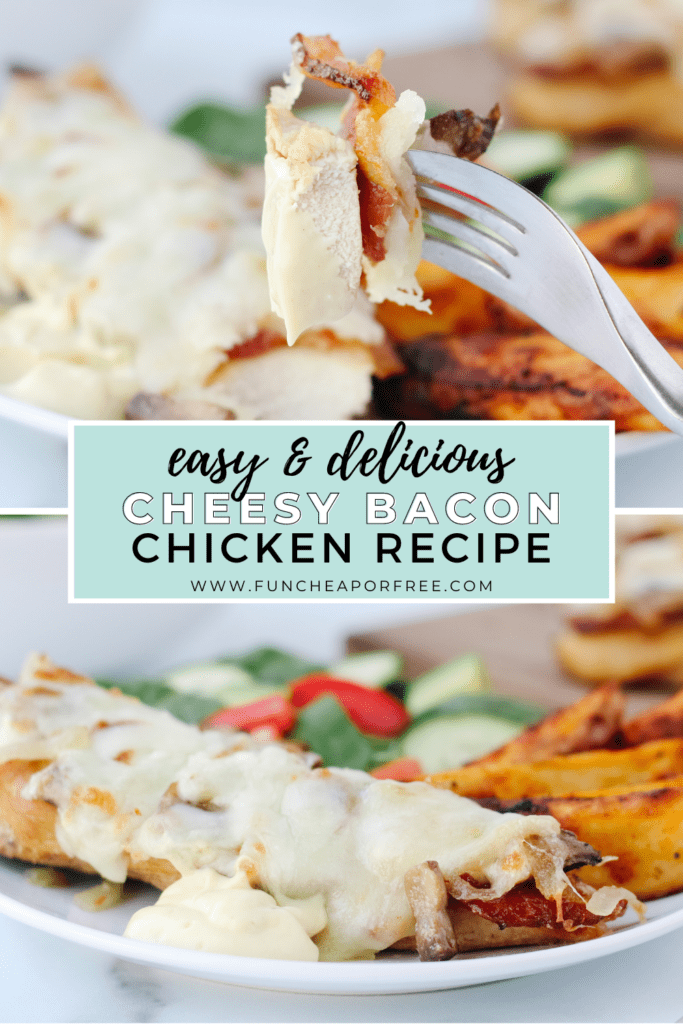 """image with text that reads """"easy and delicious cheesy bacon chicken recipe"""", from Fun Cheap or Free"""