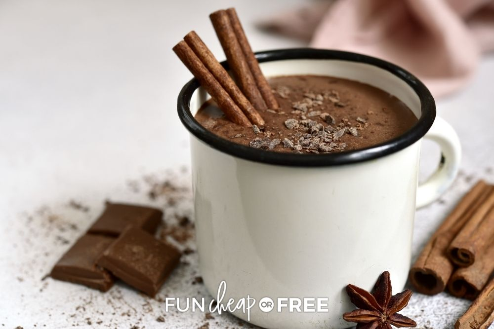 cup of homemade hot cocoa, from Fun Cheap or Free