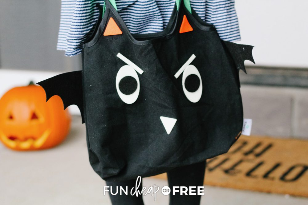 Girl holding Kiwi crate Halloween tote, trick or treating from Fun Cheap or Free